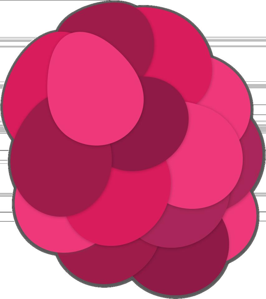 Bright Vines Grape the fruity fresh grape