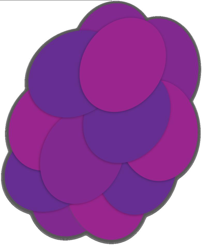 Bright Vines Grape the juicy burst grape